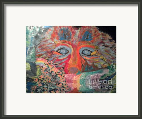 Nocturnal Survival Framed Print By Catherine Herbert