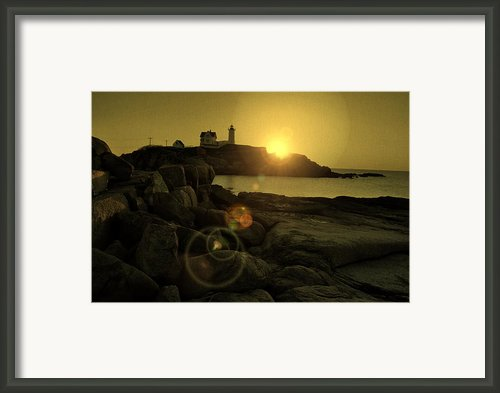 Nubble Burst Framed Print By Emily Stauring