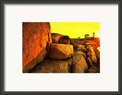 Nubble Yellow Framed Print By Emily Stauring