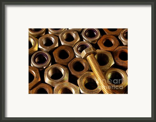 Nuts And Screw Framed Print By Carlos Caetano