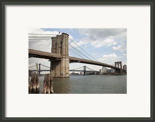 Ny Bridges 1 Framed Print By Art Ferrier