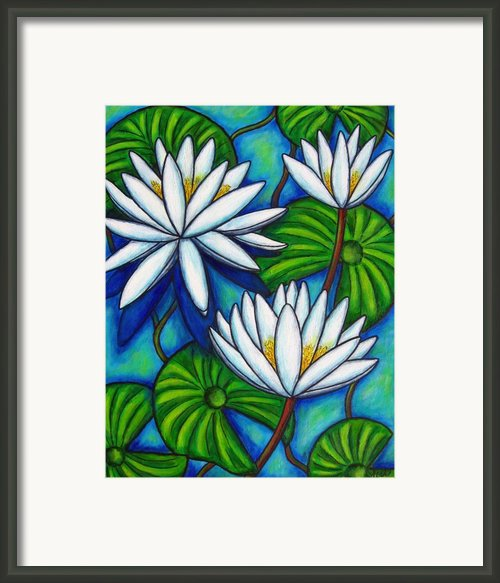 Nymphaea Blue Framed Print By Lisa  Lorenz