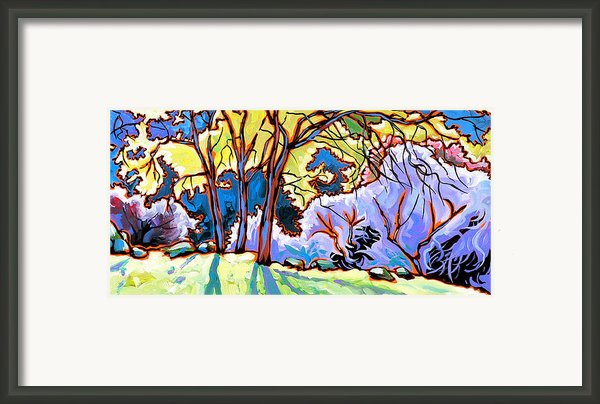 O Winter Sun Framed Print By Nadi Spencer