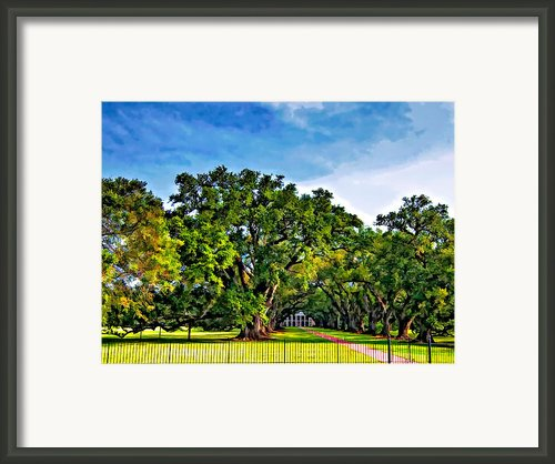 Oak Alley Plantation Framed Print By Steve Harrington