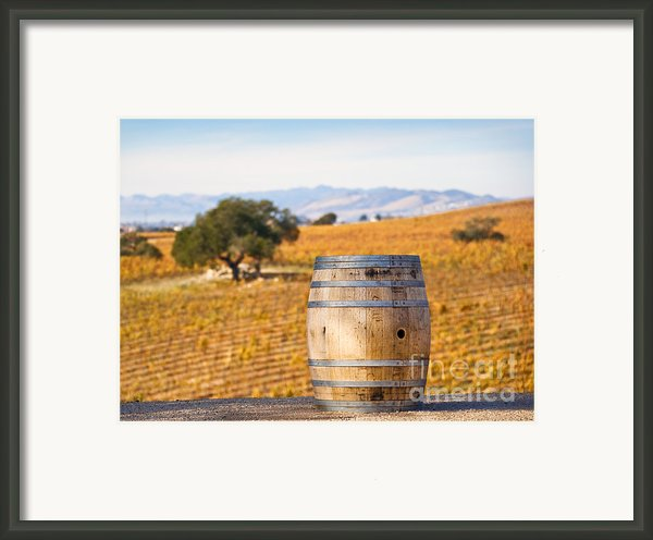 Oak Barrel At Vineyard Framed Print By David Buffington