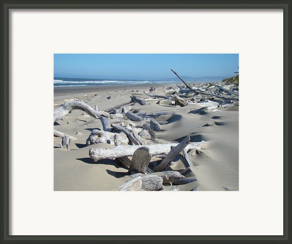Ocean Coastal Art Prints Driftwood Beach Framed Print By Baslee Troutman Fine Art Photography