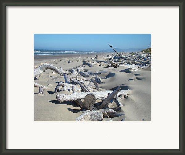 Ocean Coastal Art Prints Driftwood Beach Framed Print By Baslee Troutman Fine Art Photography