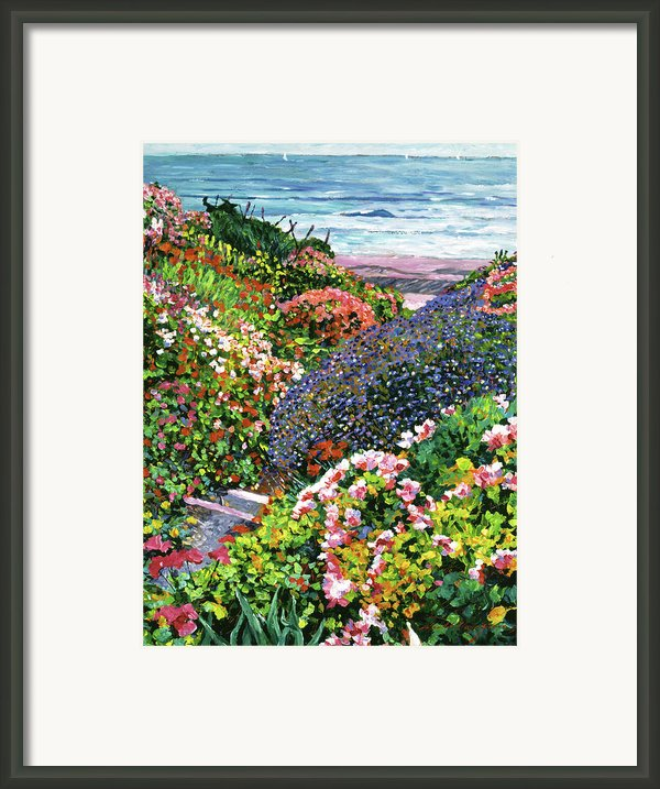 Ocean Impressions Framed Print By David Lloyd Glover
