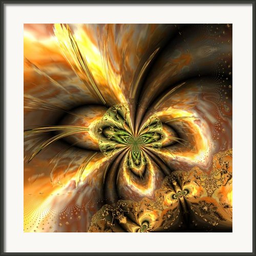 Ocf 465 Framed Print By Claude Mccoy