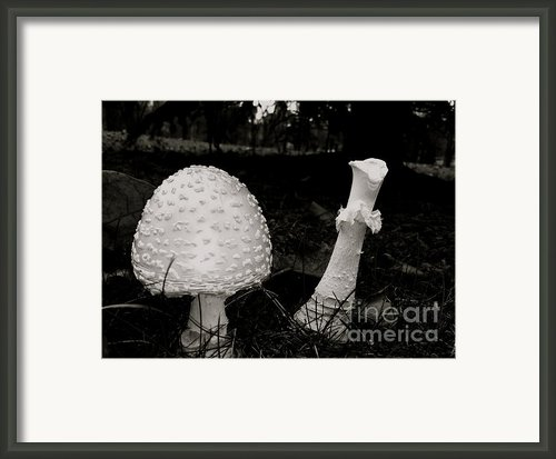 Off With Your Head Framed Print By Trish Hale