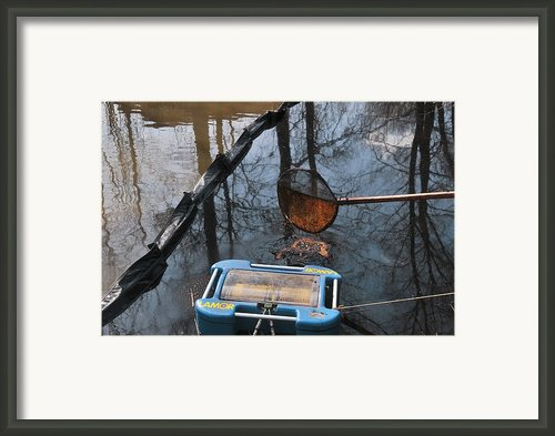 Oil Spill Cleanup, Russia Framed Print By Ria Novosti