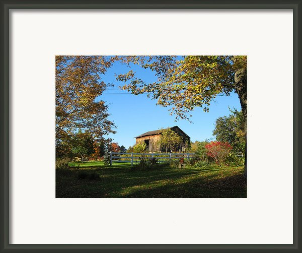Old Barn During Fall Framed Print By Leontine Vandermeer