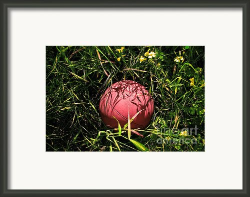 Old Basketball In The Grass Framed Print By Robert Sawin
