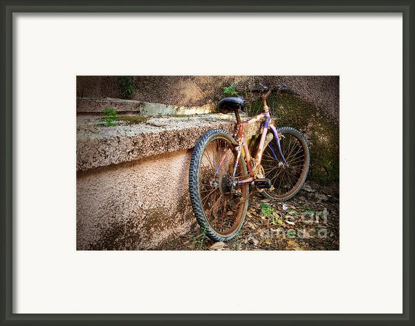 Old Bycicle Framed Print By Carlos Caetano