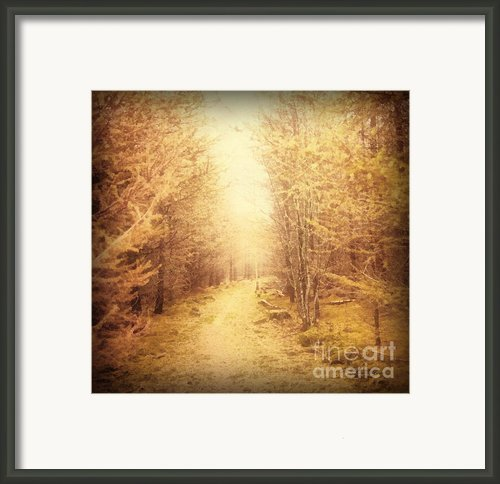Old Country Lane Framed Print By Zeana Romanovna