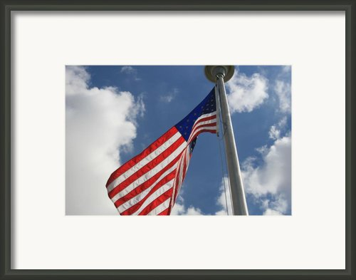 Old Glory 1 Framed Print By Bob Gardner