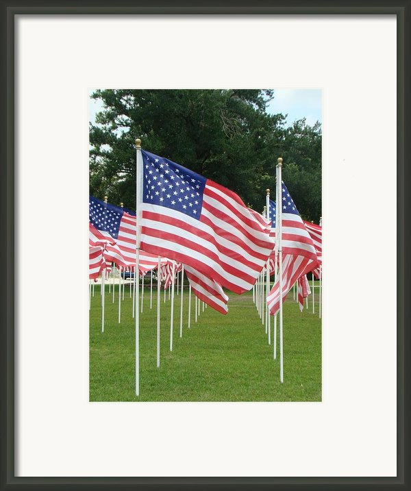 Old Glory Framed Print By Joe Byrd