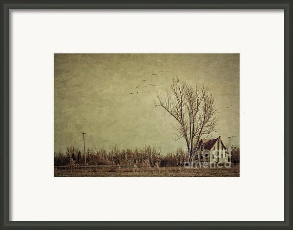 Old Rural Farmhouse With Grunge Feeling Framed Print By Sandra Cunningham