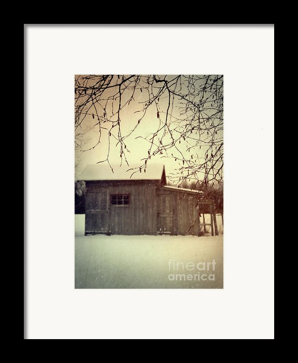 Old Shed In Wintertime Framed Print By Sandra Cunningham