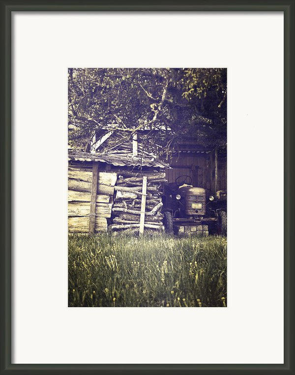Old Shed Framed Print By Joana Kruse