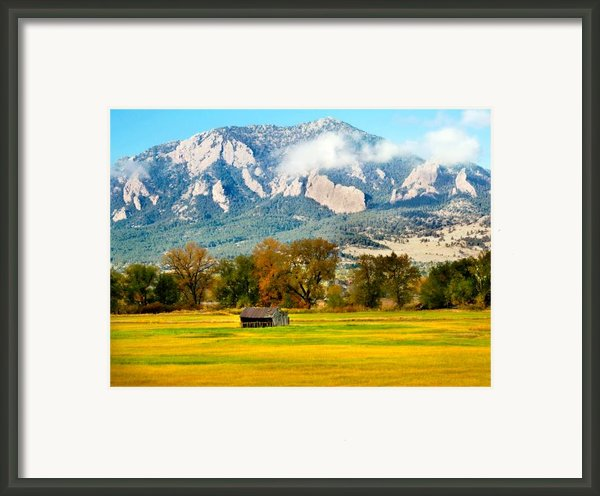 Old Shed Framed Print By Marilyn Hunt