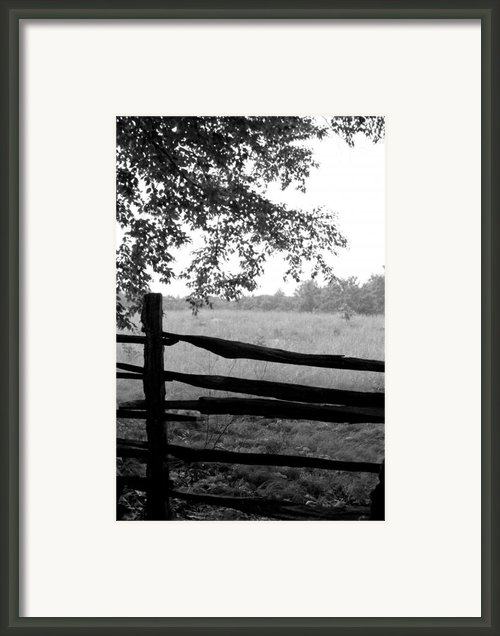 Old Sturbridge Fence In Black And White Framed Print By Belinda Dodd
