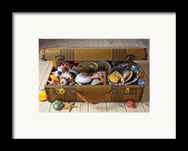Old Suitcase Full Of Sea Shells Framed Print By Garry Gay
