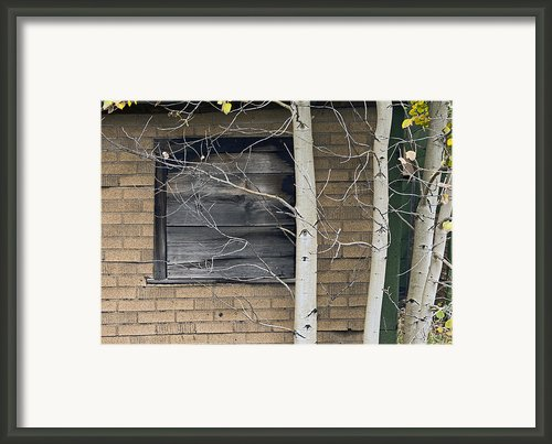 Old Window And Aspen Framed Print By James Steele