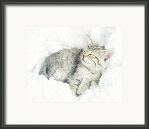 On Cloud Nine Framed Print By Amy Tyler