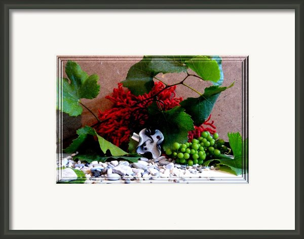 On Pebbles Framed Print By Chara Giakoumaki
