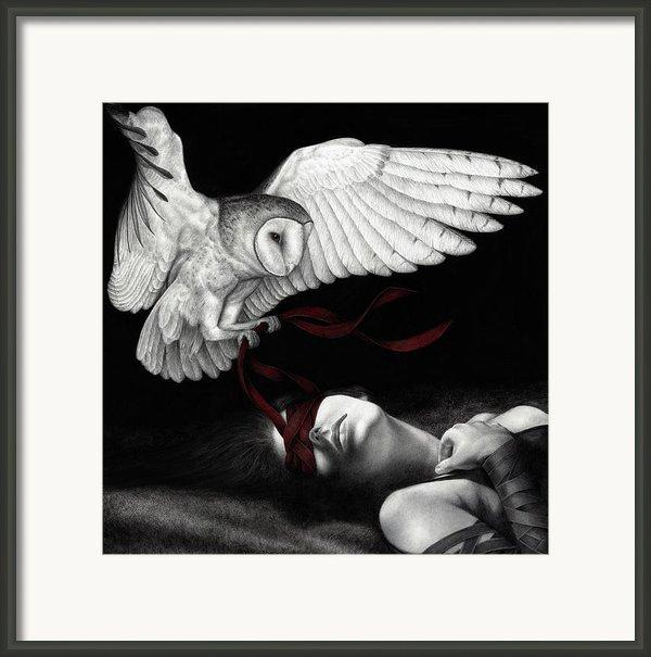 On Silent Wings Framed Print By Pat Erickson