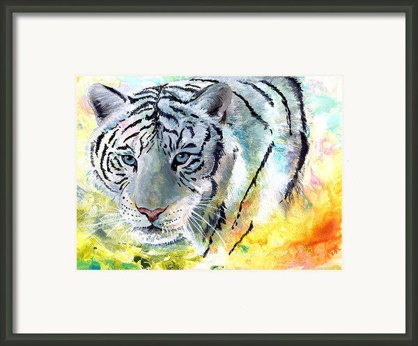 On The Prowl Framed Print By Sherry Shipley