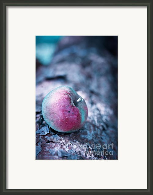One Appel A Day Framed Print By Viaina