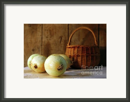 Onions On The Counter Framed Print By Sandra Cunningham