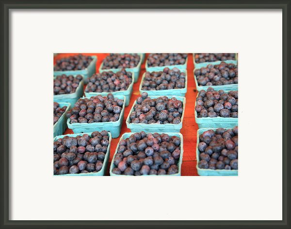 Organic Blackberries Framed Print By Wendy Connett