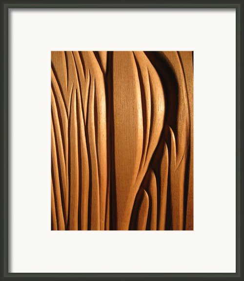 Organic Mahogany Shapes Framed Print By Charles Dancik