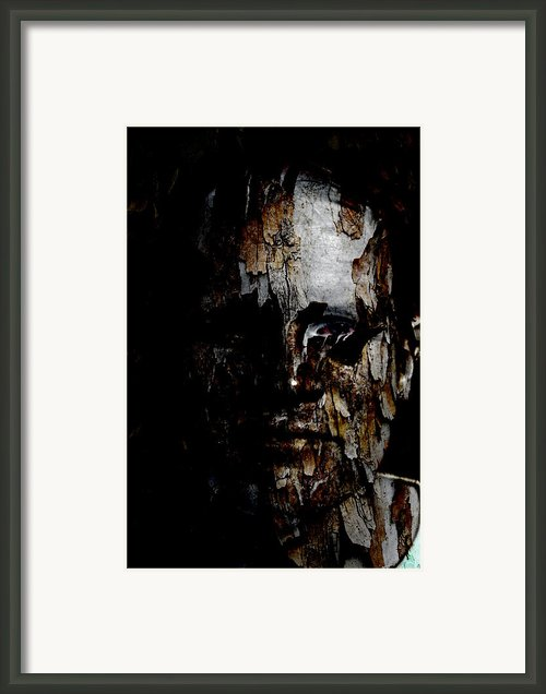 Organic Metamorphosis Framed Print By Christopher Gaston