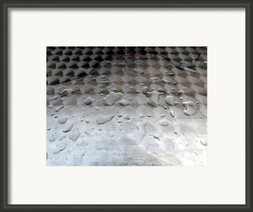 Organic Vs Geometric Framed Print By Donna Mclarty