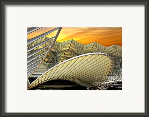 Oriente Station Framed Print By Carlos Caetano