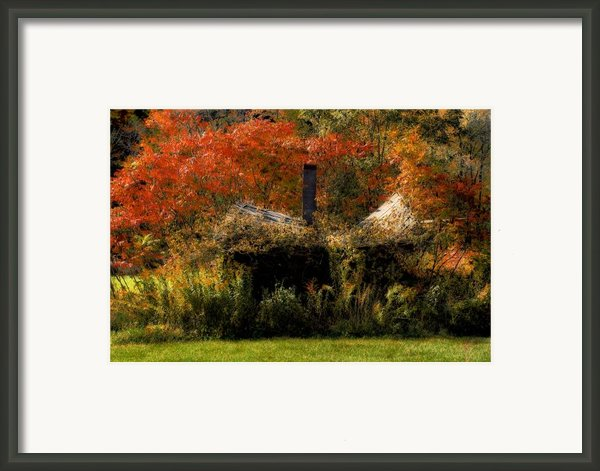 Ouch Framed Print By Lois Bryan