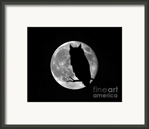 Owl Moon Framed Print By Al Powell Photography Usa