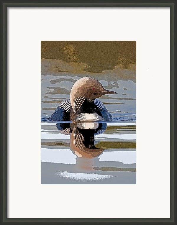 Pacific Loon Making Waves- Abstract Framed Print By Tim Grams