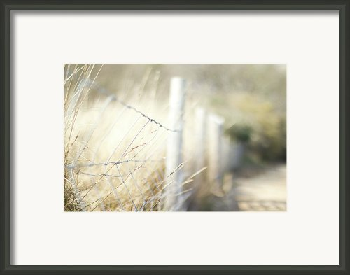 Pagham Harbour Fence Framed Print By Svgiles