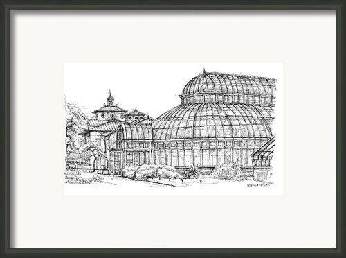 Palm House In Brooklyn Botanic Gardens Framed Print By Lee-ann Adendorff