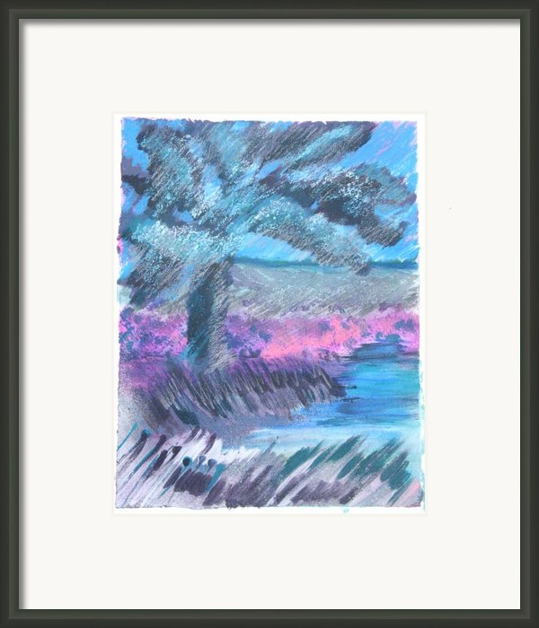 Palm Of The Night Framed Print By Judy Loper