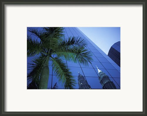 Palm Tree And Reflection Of Petronas Framed Print By Axiom Photographic