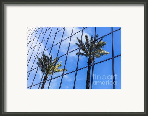 Palm Trees Reflection On Glass Office Building Framed Print By Paul Velgos