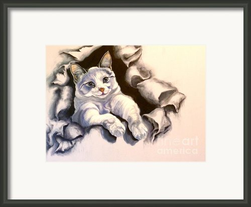 Paper Tiger Framed Print By Susan A Becker