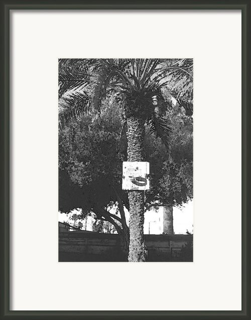 Paradise Framed Print By Angelo Battle