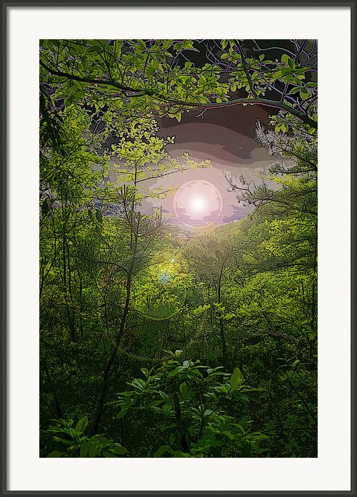 Paradise At Dawn Framed Print By Nina Fosdick